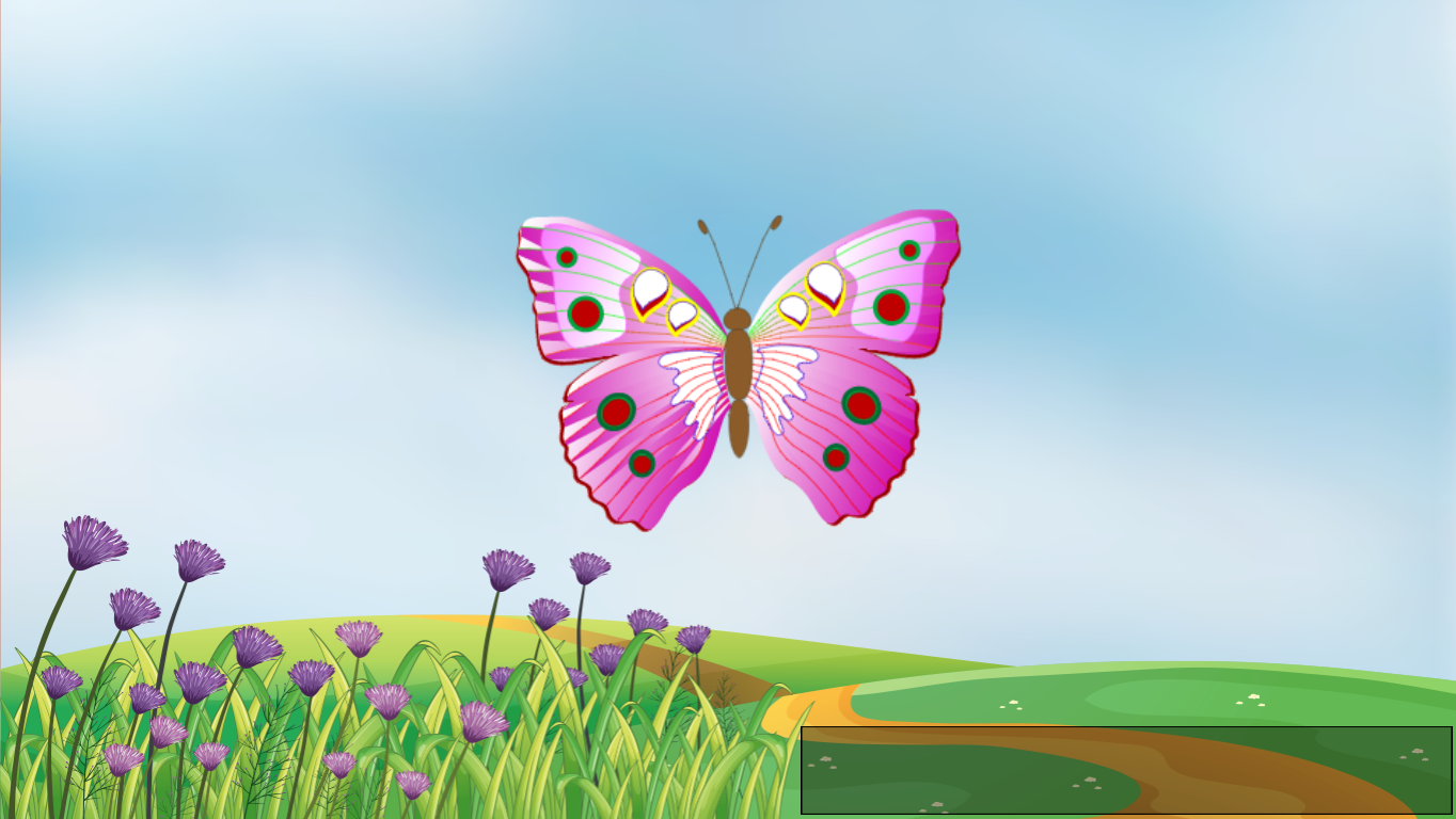 Lifecycle of a Butterfly Project